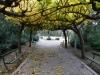 Zappeion Garden, Athens